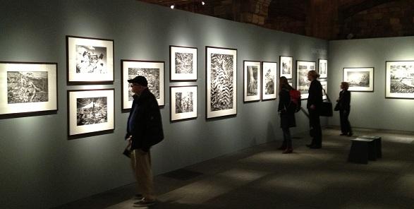 Sebastiao Selgado Gensis Exhibition NHM