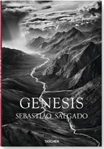 genesis-sebastiao-salgado