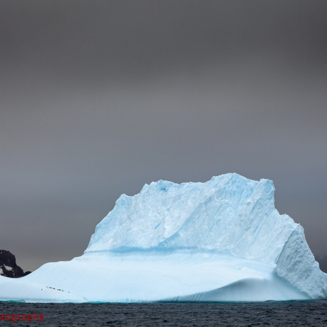 Iceberg · Aitcho Islands
