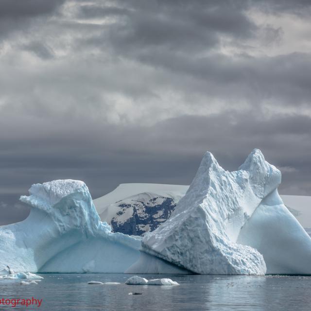 Icebergs at Cierva Cove