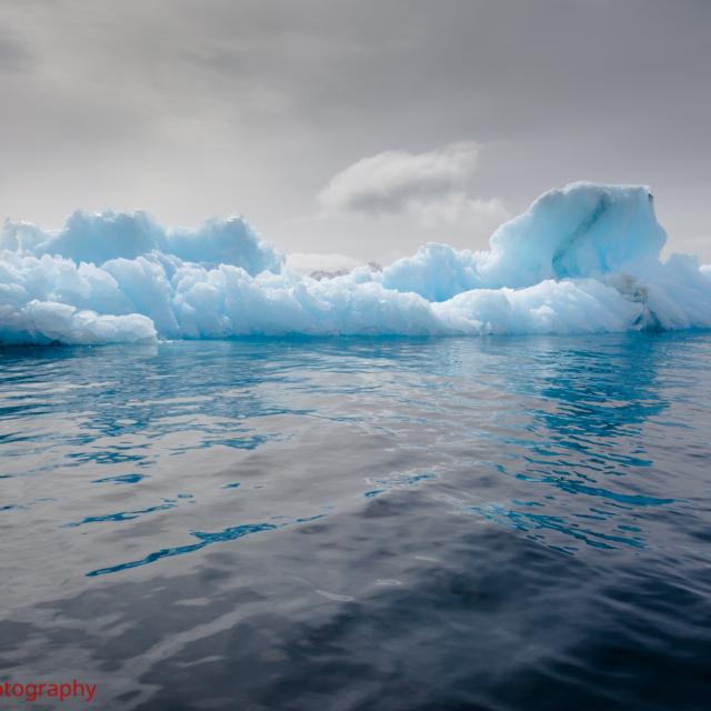 Iceberg · Half Moon Island