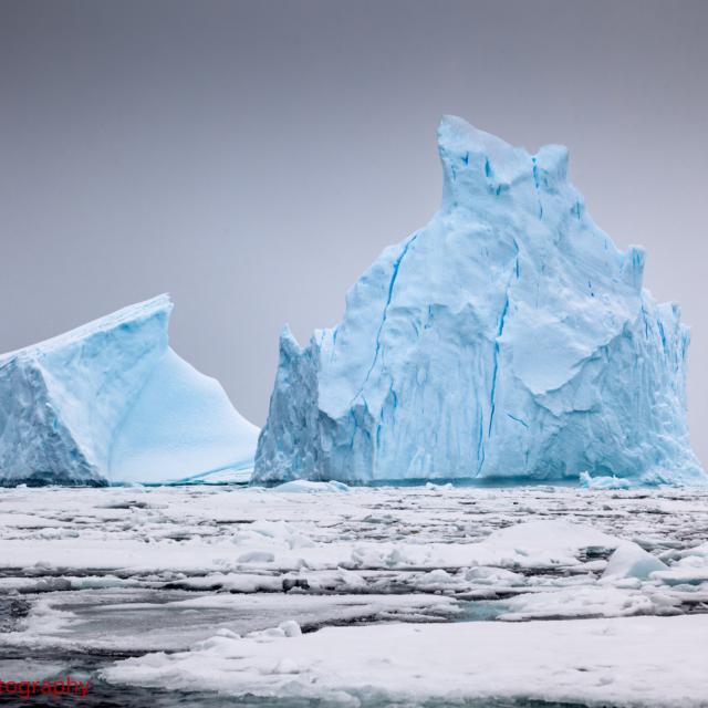 Iceberg Grave Yard