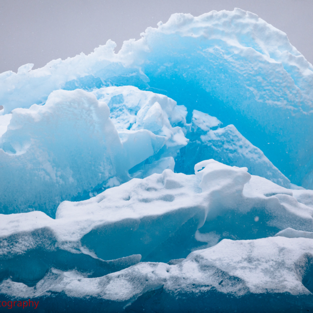 Iceberg Fins