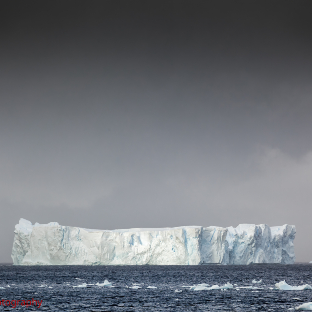 Tabular Iceberg · Neko Harbour