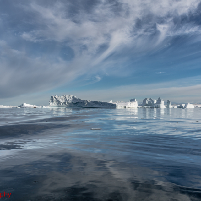 Icebergs stranded in Pléneau Bay