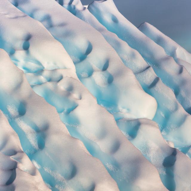 Ice Fins