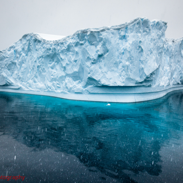 Iceberg · Wilhemina Bay