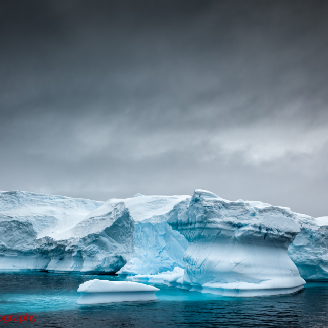 The Iceberg Sanctum · Wilhemina Bay