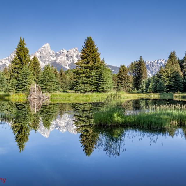 The Beaver Pond · Schwabacher Landing · Grand Tetons